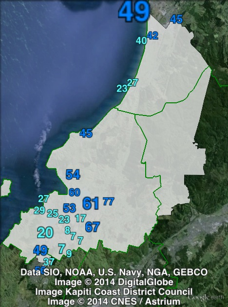 National candidate votes in Mana at the 2011 general election.